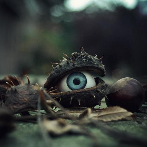 Halloween-Photography-04