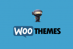 Giveaway: Cause theme from Woothemes Worth $99 (ended)