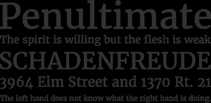 best-fonts-designers-merriweather