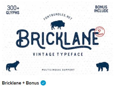 Premium, Free Fonts, Font Bundles - FontBundles net