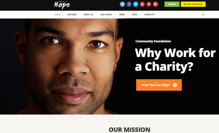 Best Charity Website Templates For Non Profit Organizations Premium