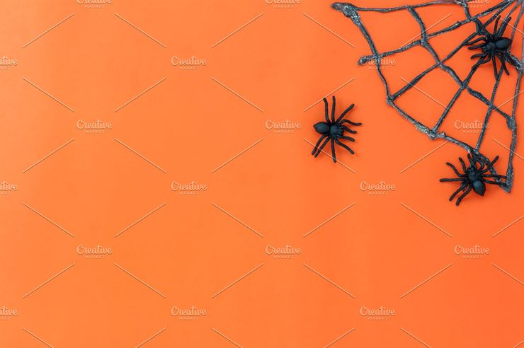 Halloween Decoration Background Web3Canvas